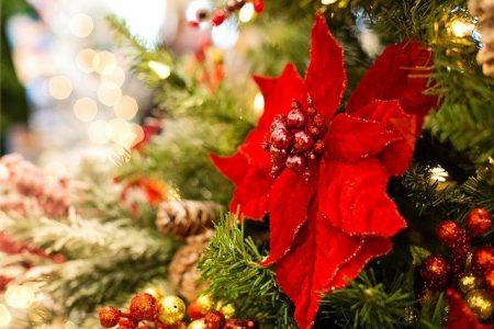 Pomysł na Boże Narodzenie